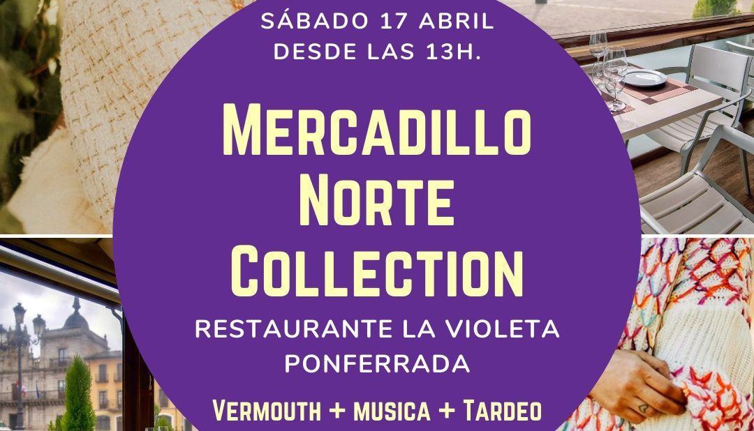 mercadillo norte collection La Violeta