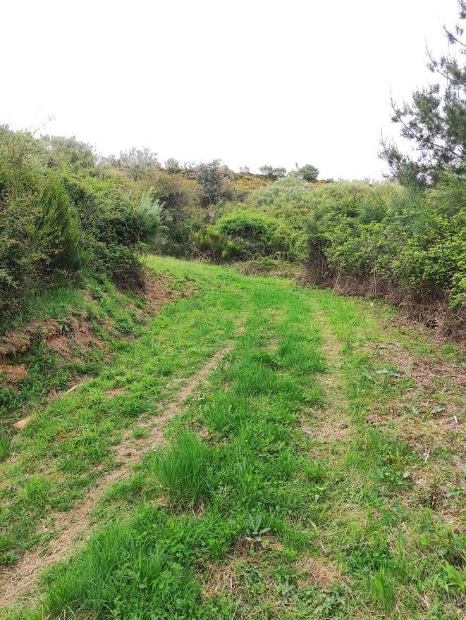 Castro de Finolledo, una ruta sencilla que nos acerca a nuestro pasado 12