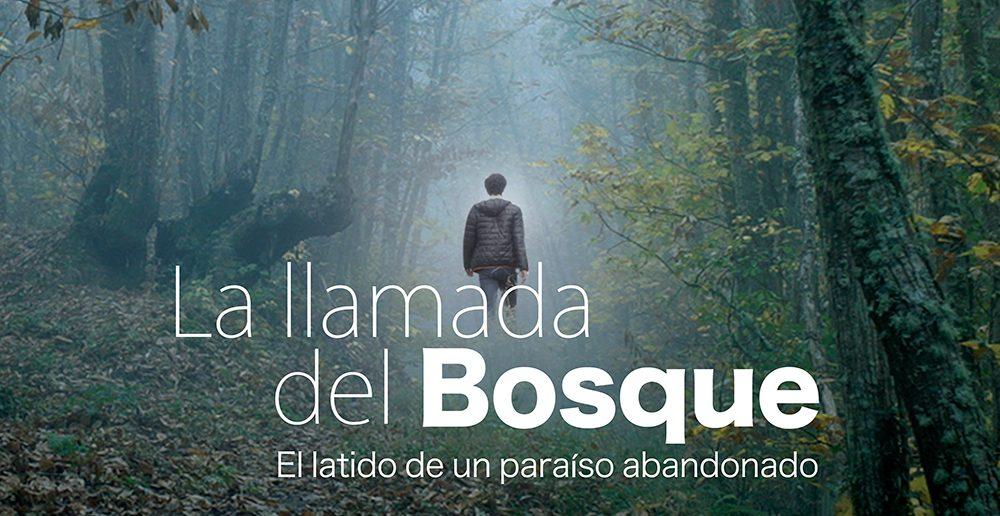 """El documental """"La Llamada del Bosque"""" dedicado al soto de castaños de Villar de los Barrios se estrenará en la UNED 1"""