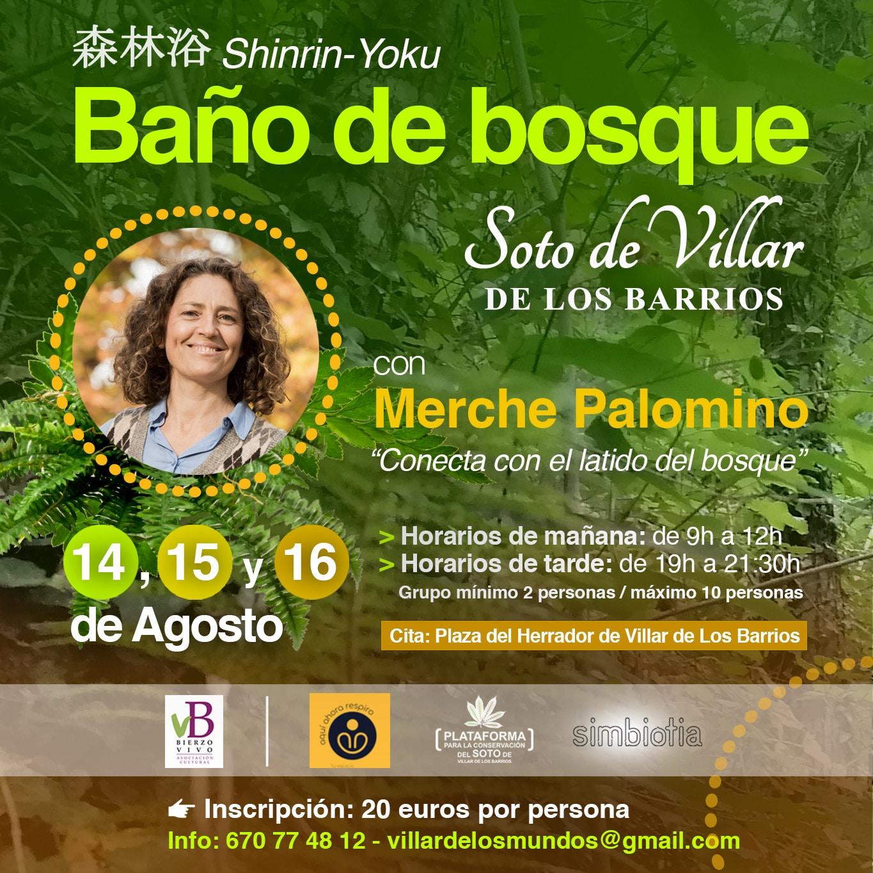 El soto de Villar de los Barrios escenario de nuevo este fin de semana de Baños de bosque 1