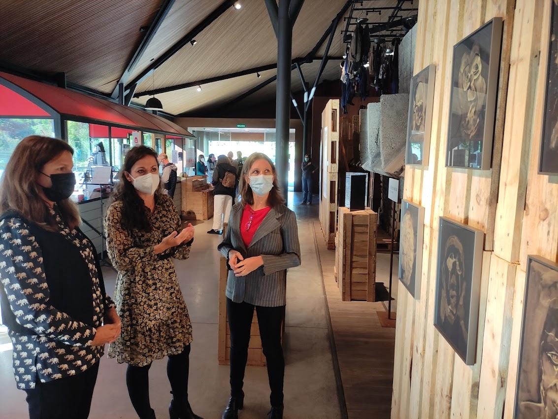 Investigadores y artistas exploran hipótesis científicas a través del arte en la nueva exposición en el Museo de la Energía 1