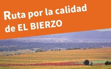 Villafranca del Bierzo acoge el domingo la Ruta por la calidad del Viñedo organizada por el Consejo Comarcal 9